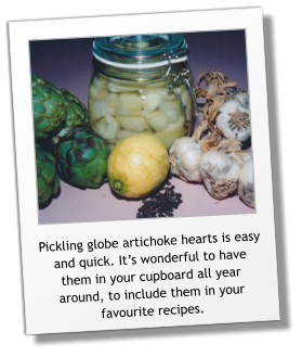 Pickling globe artichoke hearts is easy and quick. It's wonderful to have them in your cupboard all year around, to include them in your favourite recipes.